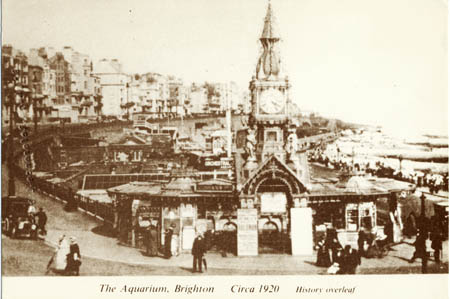 The Aquarium, Brighton Circa 1920