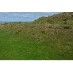 Thumbnail image for Erosion Management Survey At The Chesters, Drem 2014