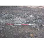 Thumbnail image for Wallyford, Rosehill Villa