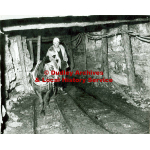 Thumbnail image for Miner and Horse at Round's Clay Pit, Amblecote