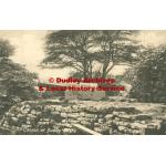 Thumbnail image for Dudley Castle