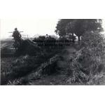 Thumbnail image for Lea House Farm, Causeway Green, Oldbury: harvesting