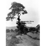 Thumbnail image for Hurst Lane, Smethwick
