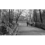 Thumbnail image for Walsall Arboretum
