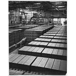 Thumbnail image for Redland, bricks, Kingswinford
