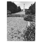 Thumbnail image for Hednesford War Memorial, Hednesford
