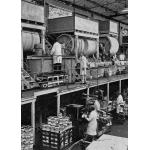 Thumbnail image for Ball Mill Installation, Mander Brothers Ltd., Wolverhampton