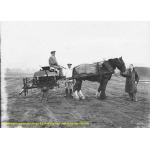 Thumbnail image for Horse-Drawn Vehicle, Imperial Chemical Industries Ltd (I.C.I), Birmingham