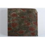 Thumbnail image for Stromatoporoid