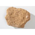 Thumbnail image for Sedimentary Rock